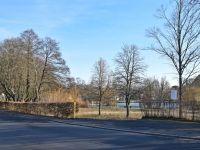 Rosenthal-Park und Grafenmühlweiher: Baumfällarbeiten