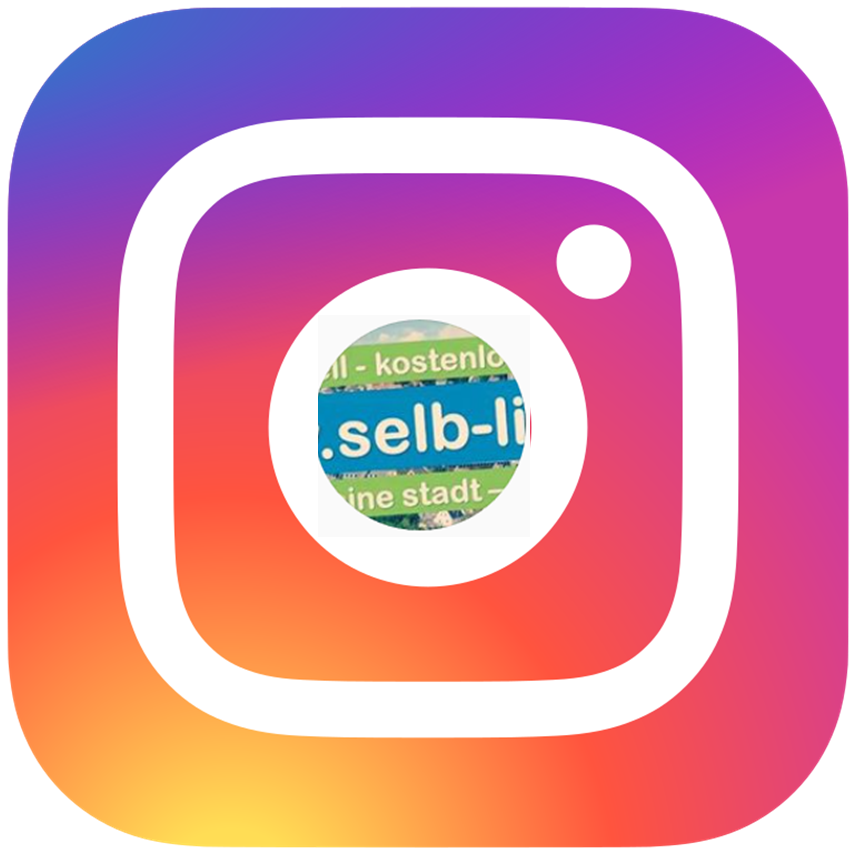 selb live instagram